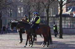 Polisen på hästar i Amsterdam, Holland royaltyfria foton