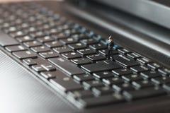 Poliser som kontrollerar bärbara datorn kodad viruset för säkerhet för datorbegreppsprogramet Royaltyfri Fotografi