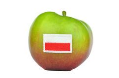 Polish apple Stock Photography