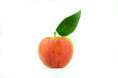 Polish apple Stock Photo