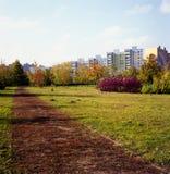 Polish autumn colors. Stock Photos