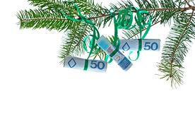 Polish banknotes on christmas tree Stock Photos
