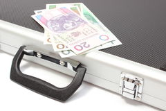 Polish banknotes lying on suitcase Stock Photos