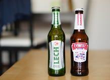 Polish beer Stock Image