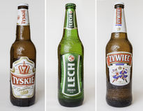 Polish beers set. Wrocław, Poland - November 08, 2012: Set of three product shots of Tyskie, Lech and Zywiec, popular Polish beers royalty free stock image