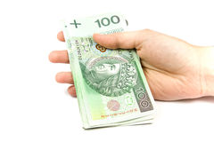 Free Polish Big Money In Hand Isolated Stock Photography - 7981542