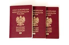 Polish biometric passports on white background. Stock Photos