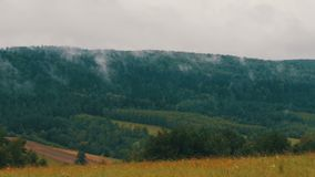 Polish Carpathians are covered with fog. The Polish Carpathians are covered with fog stock video