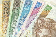Polish cash between ten to two hundred. All of polish zloty notes, from ten to two hundred Stock Images