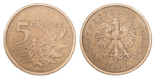 Polish coin Royalty Free Stock Image