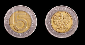 Polish coins Stock Photos