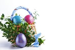 Colorful Easter eggs in a small Easter basket on a white backgro Stock Image