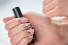 Polish container in female hand. Young womans hand with beautiful manicure holding bottle with nail polish. Feminine treatment and care Royalty Free Stock Image