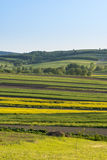 Polish countryside landscape Royalty Free Stock Images