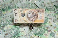 Polish currency - PLN - Polish zloty Stock Photo