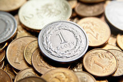 Polish currency with zloty coins royalty free stock photo