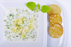 Polish dill soup Royalty Free Stock Image