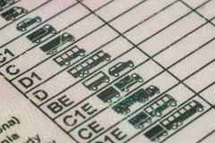 Polish driving license Stock Photos