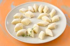 Polish dumplings. Raw polish gnocchi potato cottage cheese dumplings royalty free stock photos
