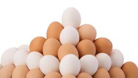 Polish eggs on the white  background Royalty Free Stock Image