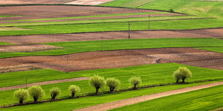 Polish fields in the spring. Ploughing on the polish fields in th spring time stock images