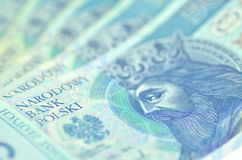 Polish fifty zloty banknotes Royalty Free Stock Images