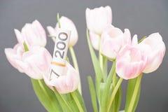 Polish financial bouquet Royalty Free Stock Photos