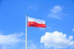 Polish flag Stock Photos