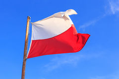 Polish flag. On the blue sky, close up stock images