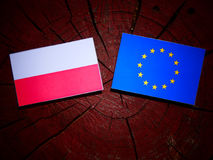 Polish flag with EU flag on a tree stump isolated. Polish flag with EU flag on a tree stump Stock Image