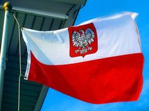 Polish flag / flag of Poland with crowned eagle. Polish flag / flag of Poland with the crowned eagle / crown eagle stock images