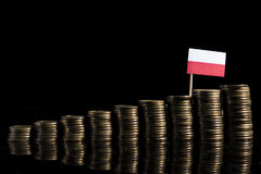Polish flag with lot of coins  on black Stock Photos