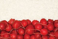 Polish flag made of food. Red radish and cottage cheese Royalty Free Stock Images