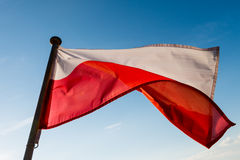 Polish flag. On the mast against blue sky royalty free stock images