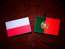 Polish flag with Portuguese flag on a tree stump isolated. Polish flag with Portuguese flag on a tree stump royalty free illustration