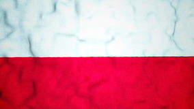Polish Flag Seamless Video Loop stock video