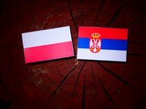 Polish flag with Serbian flag on a tree stump isolated. Polish flag with Serbian flag on a tree stump royalty free stock photos