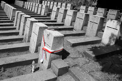 Polish flag on the soliders graves in Vilnius, Lithuania Stock Photo