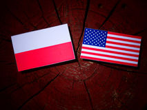 Polish flag with USA flag on a tree stump royalty free stock images