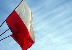 Polish flag. Waving in the wind against a clear sky stock photo