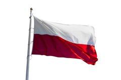 Polish flag on white Royalty Free Stock Image