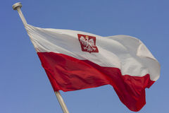 Polish flag. In the wind against a clear sky royalty free stock photography