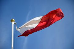 Polish flag in the wind. Against a blue sky Royalty Free Stock Photos