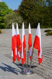 Polish flags Royalty Free Stock Photo