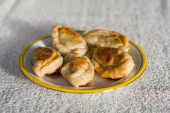 Polish fried dumplings. Polish fried dumplings on white plate royalty free stock image
