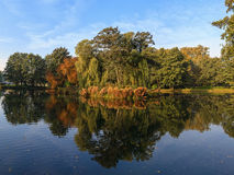 Polish golden autumn. Park in vivid colors of autumn. Gdansk, Poland Stock Image