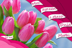 Polish greeting card for mothers day Royalty Free Stock Images