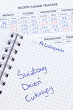 Polish inscription world diabetes day in notebook, results of measurement of sugar Stock Photography
