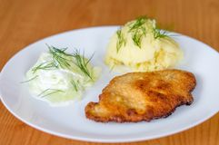 Polish kotlet schabowy pork chop with mizeria and mashed potatoes Royalty Free Stock Photos