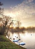 Polish lake during colorful autumn Stock Photography